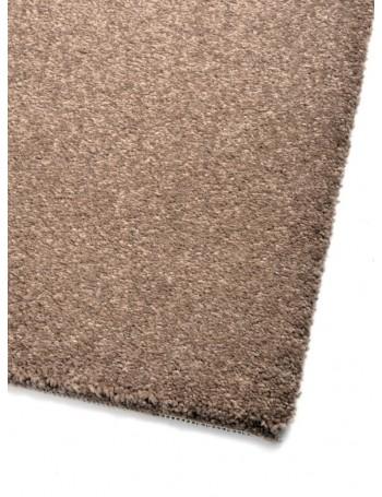 Carpet Colore Colori...