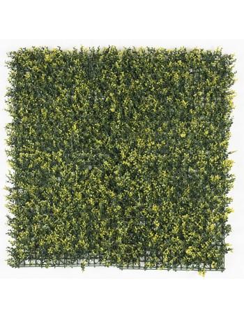 Vertical garden 50x50cm...